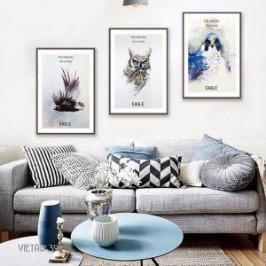 tranh dộng vật đại bàng diều hâu cú mèo